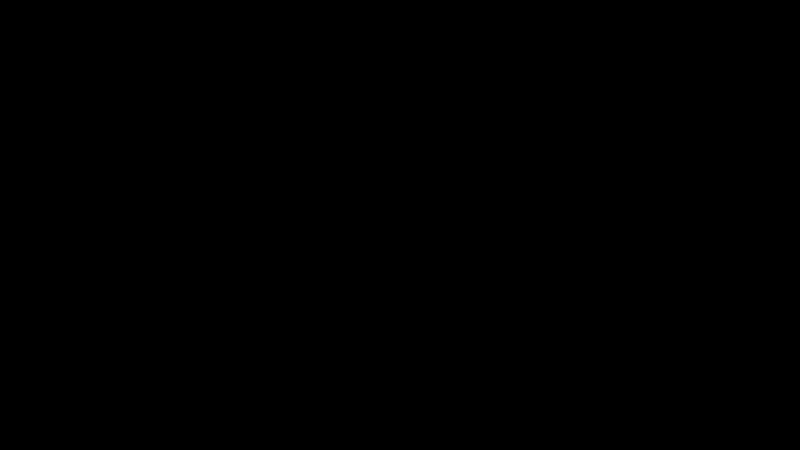 Wireframe diagram of a monoslope design solar carport showing planar end view
